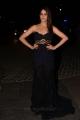 Actress Lavanya Tripathi @ 64th Filmfare Awards South 2017 Red Carpet Photos
