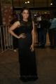 Actress Wamiqa Gabbi @ 64th Filmfare Awards South 2017 Red Carpet Photos