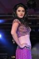 Hyderabad International Fashion Week 2011 (Day 4)