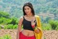 Actress Sanchita Padukone Hot in Chammak Challo Latest Stills
