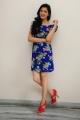 Actress Richa Panai @ Chandamama Kathalu Pre-Release Press Meet Stills