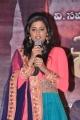 Priyamani @ Chandi Movie Platinum Disc Function Stills