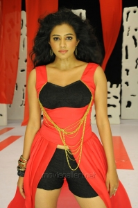Chandi Movie Actress Priyamani Hot Stills