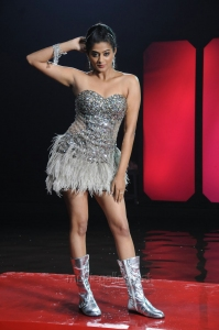 Chandi Actress Priyamani Hot Spicy Stills