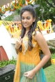 Actress Chandini in Yellow Dress at Kaali Charan Movie Launch