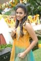 Actress Chandini Tamilarasan Cute Photos