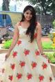Actress Chandni Bhagwanani Latest Pics @ Ratham Movie Pre Release