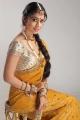 Chandra Movie Heroine Shriya Stills