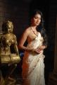 Shriya Saran Latest Photos from Chandra Movie