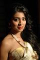 Chandra Movie Actress Shriya Saran Hot Stills