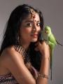 Shriya Saran Hot in Chandra Movie Stills