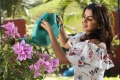Actress Nikki Galrani in Charlie Chaplin 2 Movie HD Images