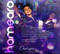 Karthi's Cheliyaa Hamsaro Single Song Release Posters