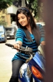 Actress Amitha Rao in Chemistry Telugu Movie Stills