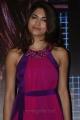 Billa 2 Actress Parvathy Omanakuttan at CIFW 2012 Curtain Raiser Stills