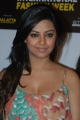 Meera Chopra at CIFW 2012 Curtain Raiser Stills