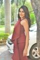 Nikki Tamboli @ Chikati Gadilo Chithakotudu Trailer Launch Stills