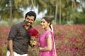 Karthi, Sayesha in Chinna Babu Movie Stills