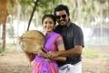 Sayesha, Karthi in Chinna Babu Movie Stills HD