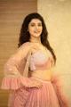 Actress Chitra Shukla Hot Photos @ Silly Fellows Pre Release
