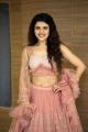 Silly Fellows Actress Chitra Shukla Hot Photos