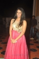 Shravya Reddy at Cinema Mahila Awards 2013 Photos
