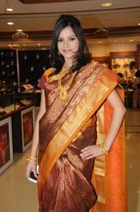 Hyderabad Model Himani Singh in Saree Photos