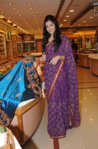 Beautiful Hyderabad Model Annie in Saree Stills