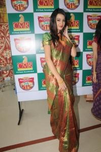 Hyderabad Model Diksha Panth in Silk Saree Photos