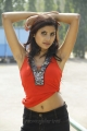 Colorful Life Heroine Ruthika Hot Photos
