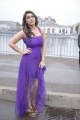 Actress Hansika Motwani in Crazy Telugu Movie Stills