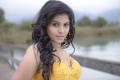Crazy Movie Anjali Stills