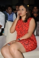 Jwala Gutta @ Crescent Cricket Cup Trophy Launch Photos