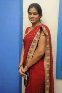 Cut Chesthe Movie Audio Release Function Photos