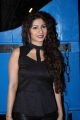 Tanishaa @ Dabboo Ratnani 2015 Calendar Launch Stills