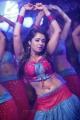 Nikita Thukral in Daddy Cool Telugu Movie Stills