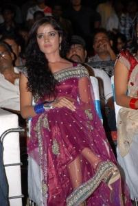 Actress Piaa Bajpai at Dalam Movie Audio Release Photos