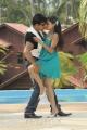 Arjun, Archana Gupta Hot in Dalapathi Telugu Movie Stills