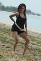 Actress Archana Gupta in Dalapathi Movie Hot Stills