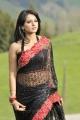Damarukam Anushka Hot Saree Latest Photos