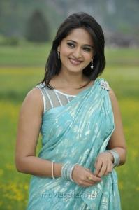 Actress Anushka Hot Saree Photos in Damarukam Movie