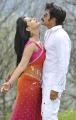 Nagarjuna,Anushka At Damarukam Movie Latest Stills