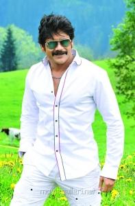 Damarukam Movie Hero Nagarjuna Pics