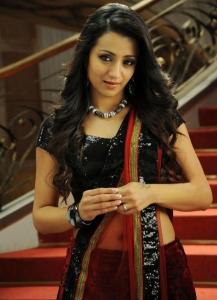 Actress Trisha in Dammu Movie Photos