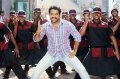 NTR Dammu Movie Latest Photos
