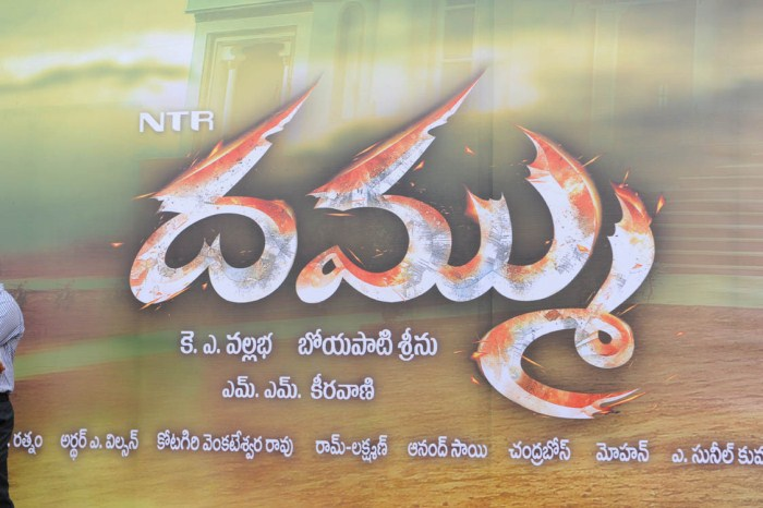 Dammu Telugu Movie Audio Release Stills