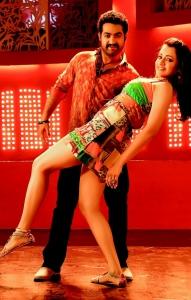 Dammu Trisha Hot Stills with NTR