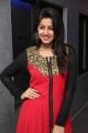 Actress Nikki Galrani @ Darling Movie Press Show Photos