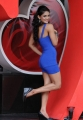 Daruvu Movie Item Girl Spicy Hot Photos