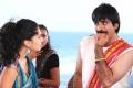 Tapsee Ravi Teja in Daruvu Movie Latest Stills
